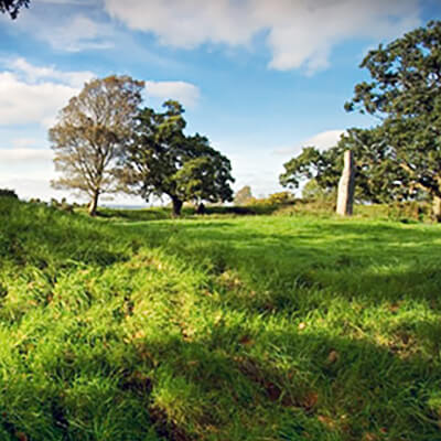 Longstone Rath - County Kildare
