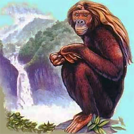 Illustration of the Orang Pendek of Sumatra
