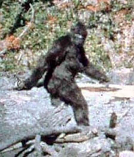 Patterson-Gimlin Bigfoot film